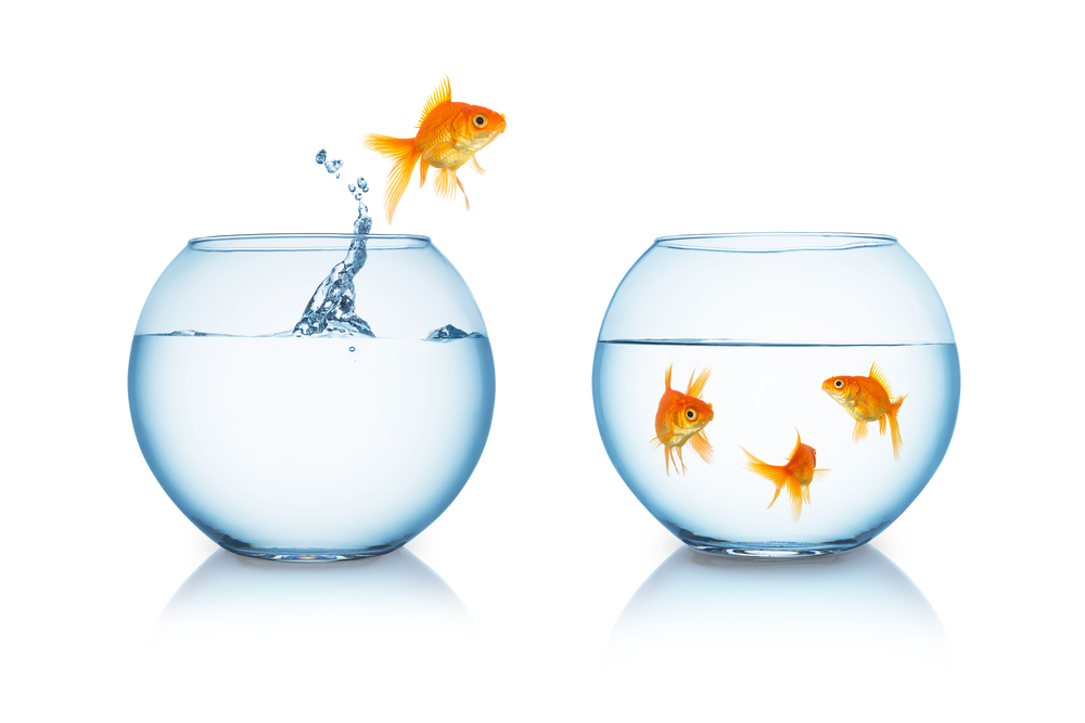 pure balance. Black Bedroom Furniture Sets. Home Design Ideas